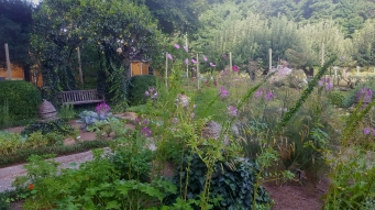 Volunteered with Annie at the Boscobel Garden.