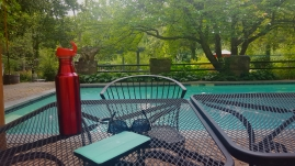 Some afternoon quiet by the pool.