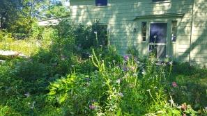 Miriam's Garden