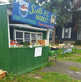A local farm stand, where I purchased dinner provisions.