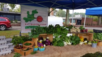 At the Zebulon Farmers Market with the Fat Radish.