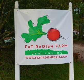 The Fat Radish!