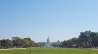 A view of the Capital Building.